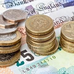 Explaining Monetary Reform
